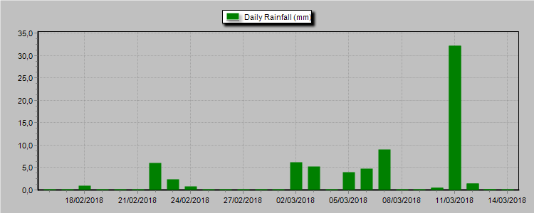 Daily Rainfall